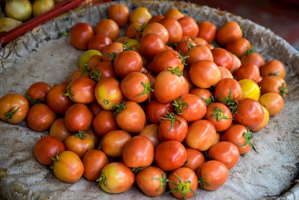 El Tomate de Ramallet