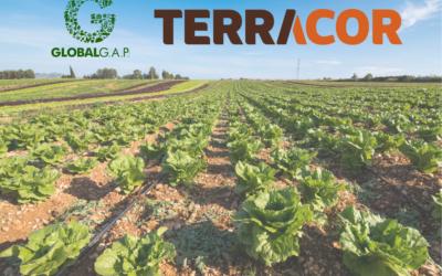 Certificado GLOBALCAP: qué es y por qué Terracor lo tiene